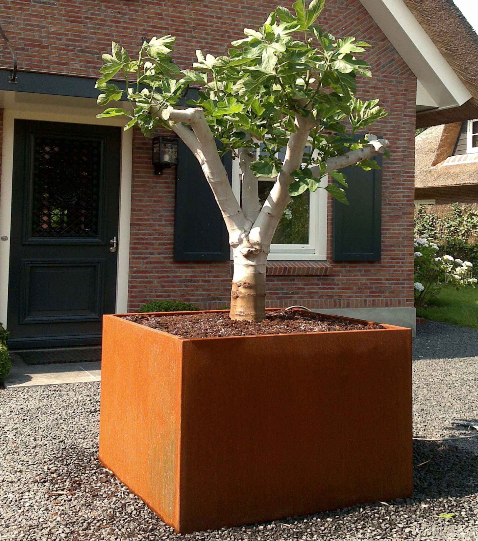 Large Corten Steel Planters from potstore.co.uk on black planters, extra large planters, mini planters, custom planters, green planters,